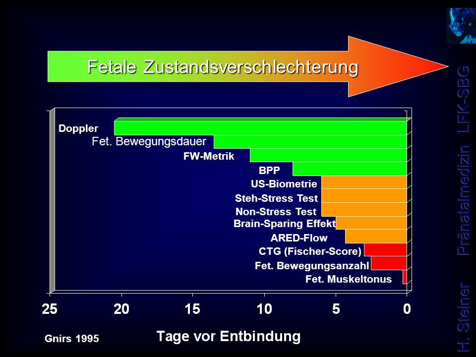 Doppler FW-Metrik Fet. Bewegungsdauer BPP US-Biometrie Steh-Stress Test Non-Stress Test Brain-Sparing Effekt ARED-Flow CTG (Fischer-Score) Fet. Bewegu