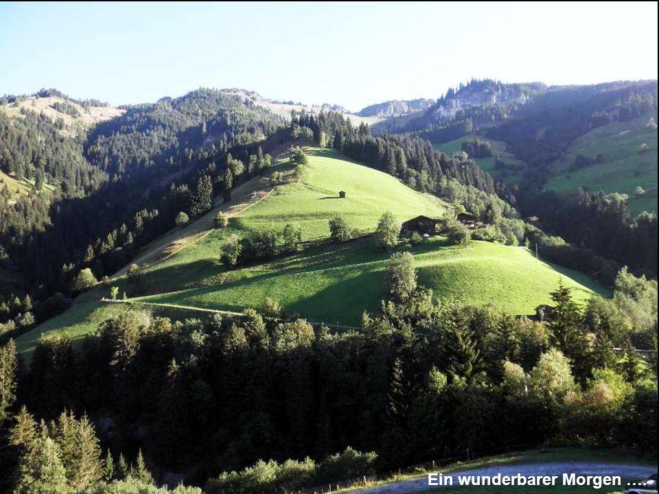 Von Hütte zu Hütte Mit der Panoramabahn Großarltal geht es auf das Panorama- plateau zur Laireiteralm (1850 m) und weiter geht es gemütlich bergwärts entlang eines Güterweges zum Kreuzkogel (2027 m).