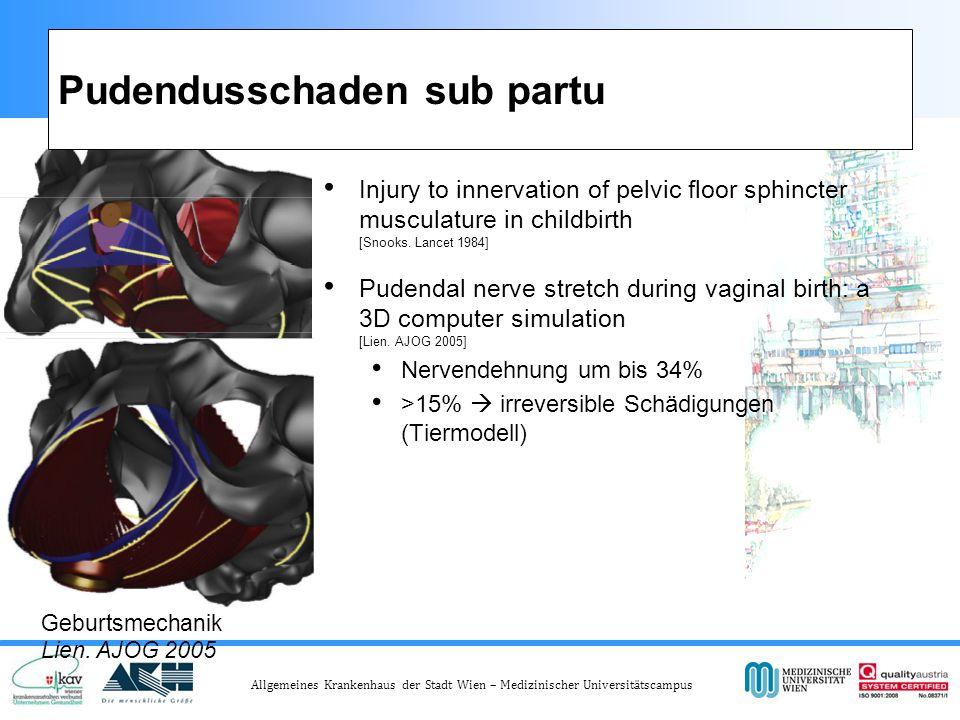 Allgemeines Krankenhaus der Stadt Wien – Medizinischer Universitätscampus Pudendusschaden sub partu Injury to innervation of pelvic floor sphincter musculature in childbirth [Snooks.