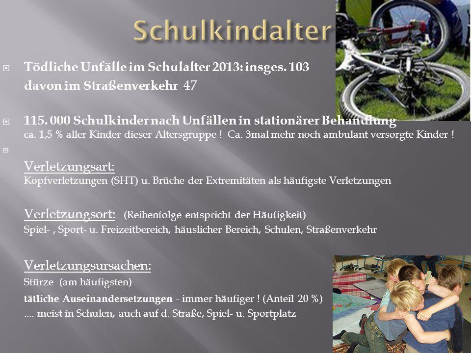  Tödliche Unfälle im Schulalter 2013: insges. 103 davon im Straßenverkehr 47  115.