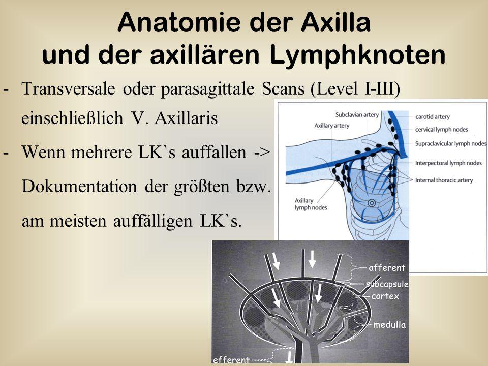 Anatomie der Axilla und der axillären Lymphknoten -Transversale oder parasagittale Scans (Level I-III) einschließlich V. Axillaris -Wenn mehrere LK`s
