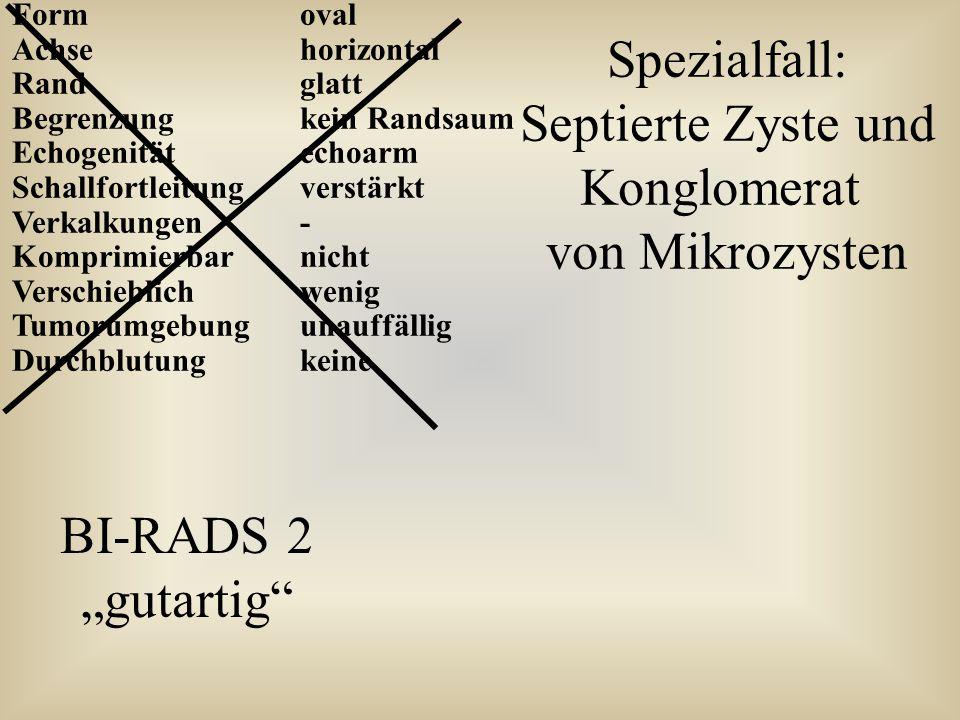 Formoval Achsehorizontal Randglatt Begrenzungkein Randsaum Echogenitätechoarm Schallfortleitungverstärkt Verkalkungen- Komprimierbarnicht Verschieblic
