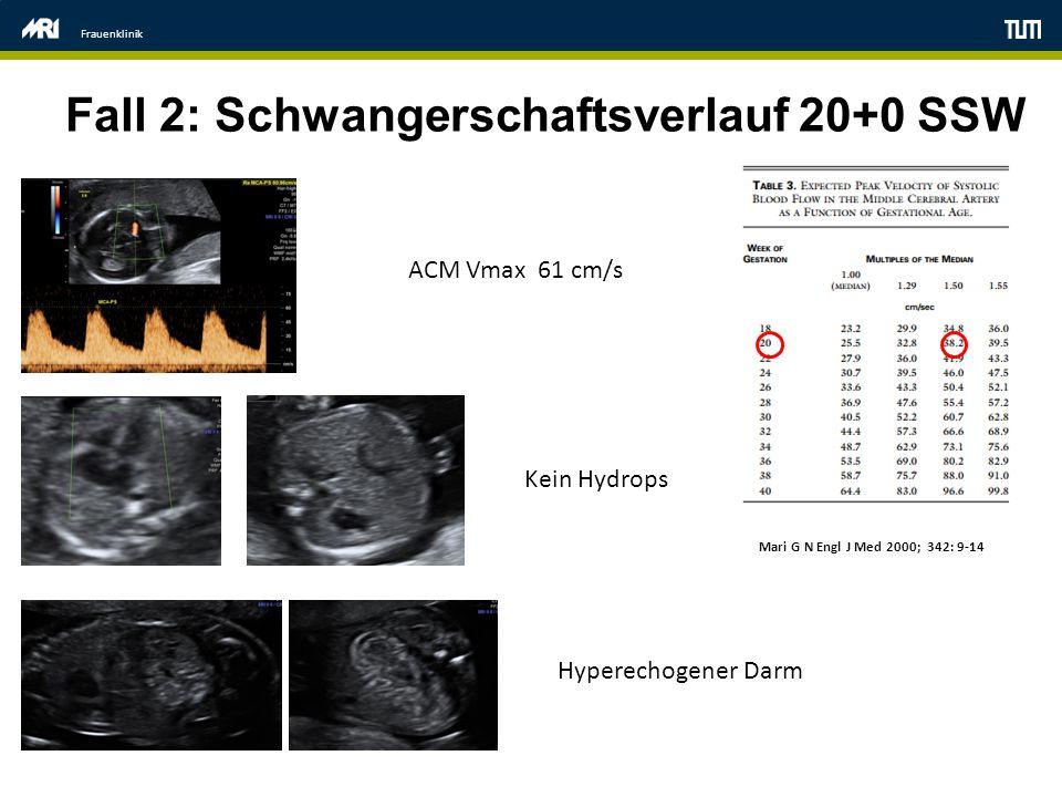Frauenklinik Fall 2: Schwangerschaftsverlauf 20+0 SSW ACM Vmax 61 cm/s Kein Hydrops Hyperechogener Darm Mari G N Engl J Med 2000; 342: 9-14