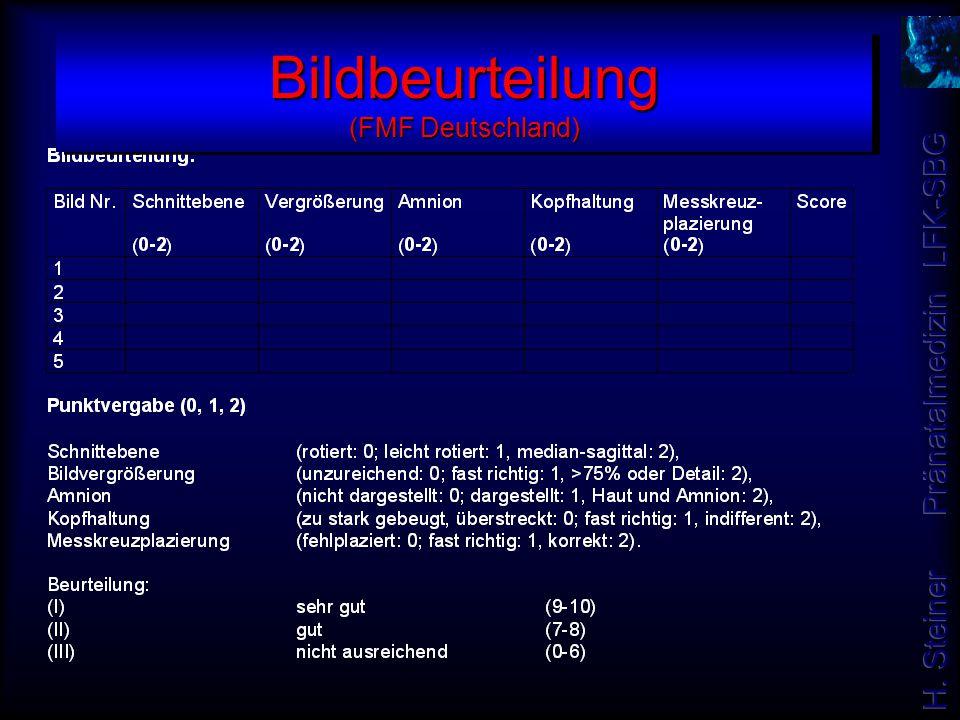 Bildbeurteilung (FMF Deutschland)