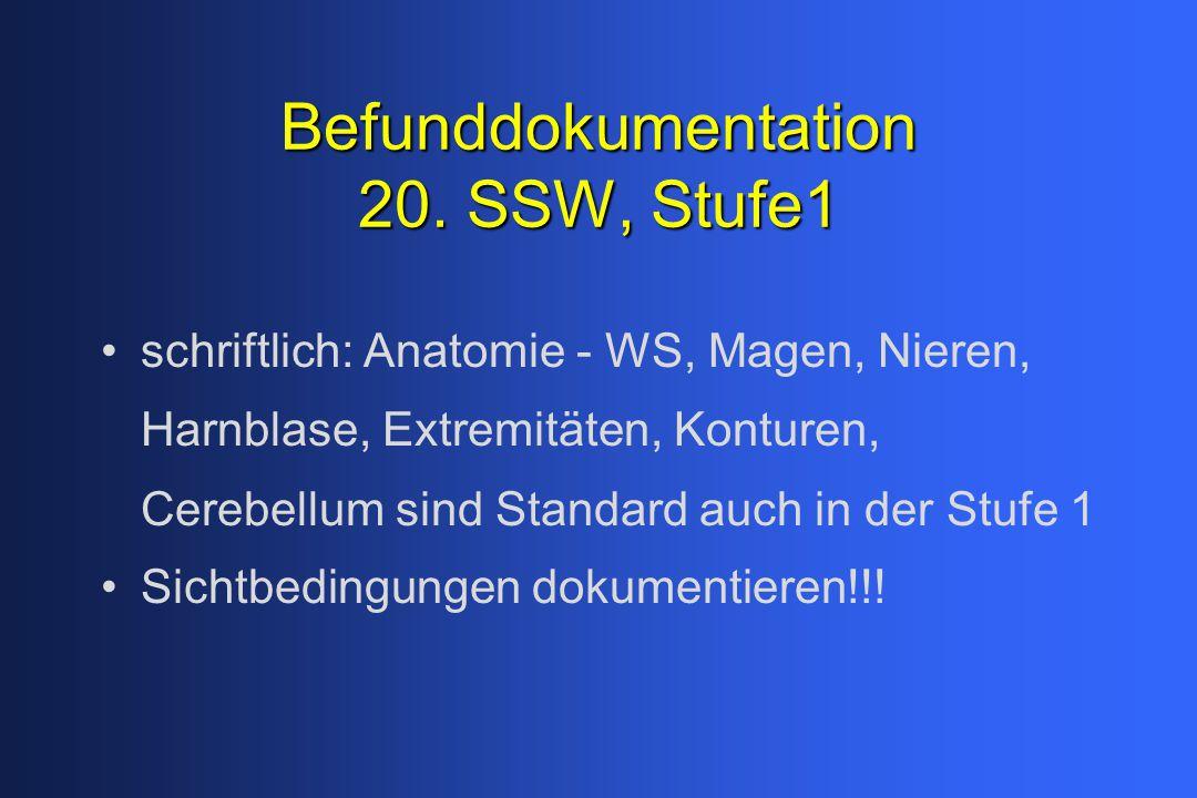 Befunddokumentation 20. SSW, Stufe1 schriftlich: Anatomie - WS, Magen, Nieren, Harnblase, Extremitäten, Konturen, Cerebellum sind Standard auch in der