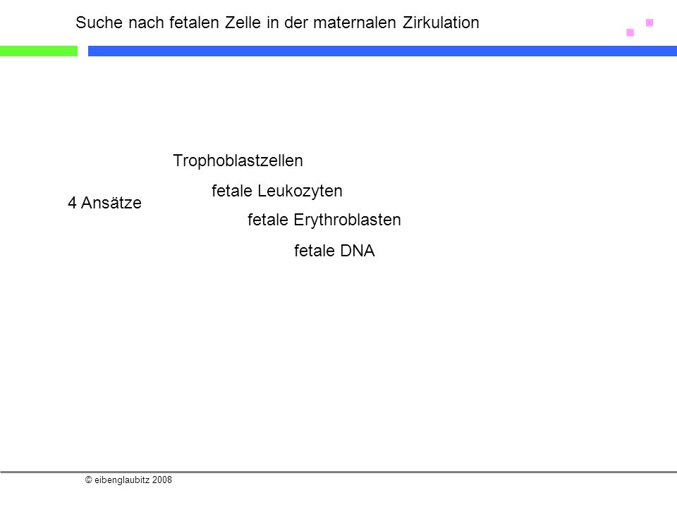 © eibenglaubitz 2008 Suche nach fetalen Zelle in der maternalen Zirkulation 4 Ansätze Trophoblastzellen fetale Leukozyten fetale Erythroblasten fetale