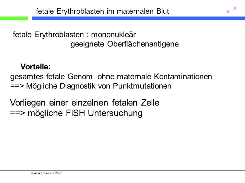 © eibenglaubitz 2008 fetale Erythroblasten im maternalen Blut fetale Erythroblasten : mononukleär geeignete Oberflächenantigene gesamtes fetale Genom