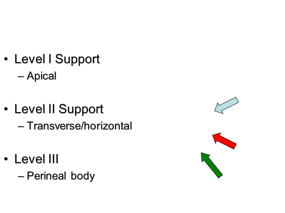Level I SupportLevel I Support –Apical Level II SupportLevel II Support –Transverse/horizontal Level IIILevel III –Perineal body