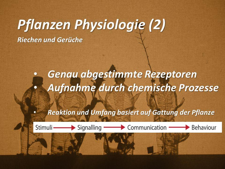 Pflanzen Physiologie (2) Riechen und Gerüche Genau abgestimmte Rezeptoren Genau abgestimmte Rezeptoren Aufnahme durch chemische Prozesse Aufnahme durc