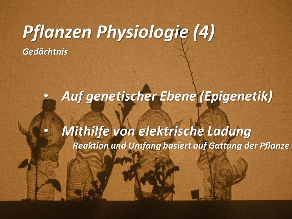 Pflanzen Physiologie (4) Gedächtnis Auf genetischer Ebene (Epigenetik) Auf genetischer Ebene (Epigenetik) Mithilfe von elektrische Ladung Mithilfe von