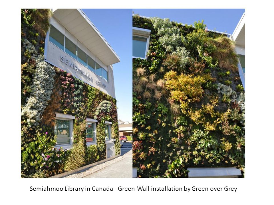Semiahmoo Library in Canada - Green-Wall installation by Green over Grey