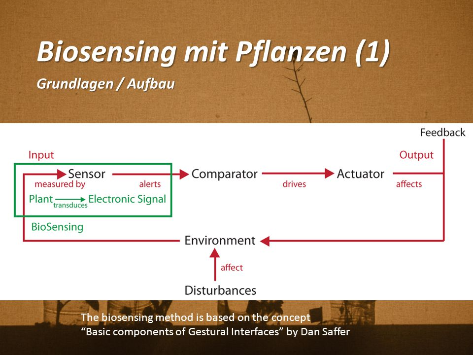 "Biosensing mit Pflanzen (1) Grundlagen / Aufbau The biosensing method is based on the concept ""Basic components of Gestural Interfaces"" by Dan Saffer"