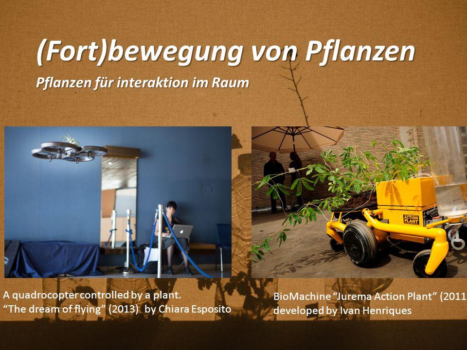 """(Fort)bewegung von Pflanzen Pflanzen für interaktion im Raum BioMachine """"Jurema Action Plant"""" (2011) developed by Ivan Henriques A quadrocopter contro"""