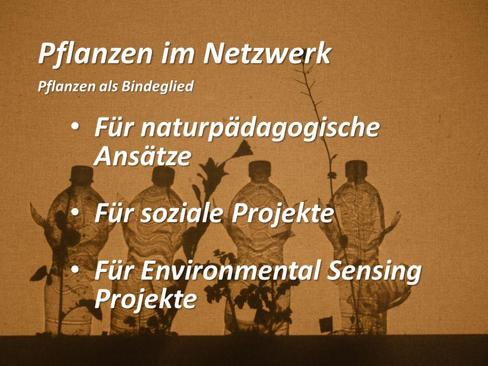 Pflanzen im Netzwerk Pflanzen als Bindeglied Für naturpädagogische Ansätze Für naturpädagogische Ansätze Für soziale Projekte Für soziale Projekte Für