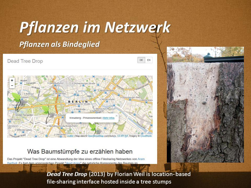 Pflanzen im Netzwerk Pflanzen als Bindeglied Dead Tree Drop (2013) by Florian Weil is location- based file-sharing interface hosted inside a tree stum