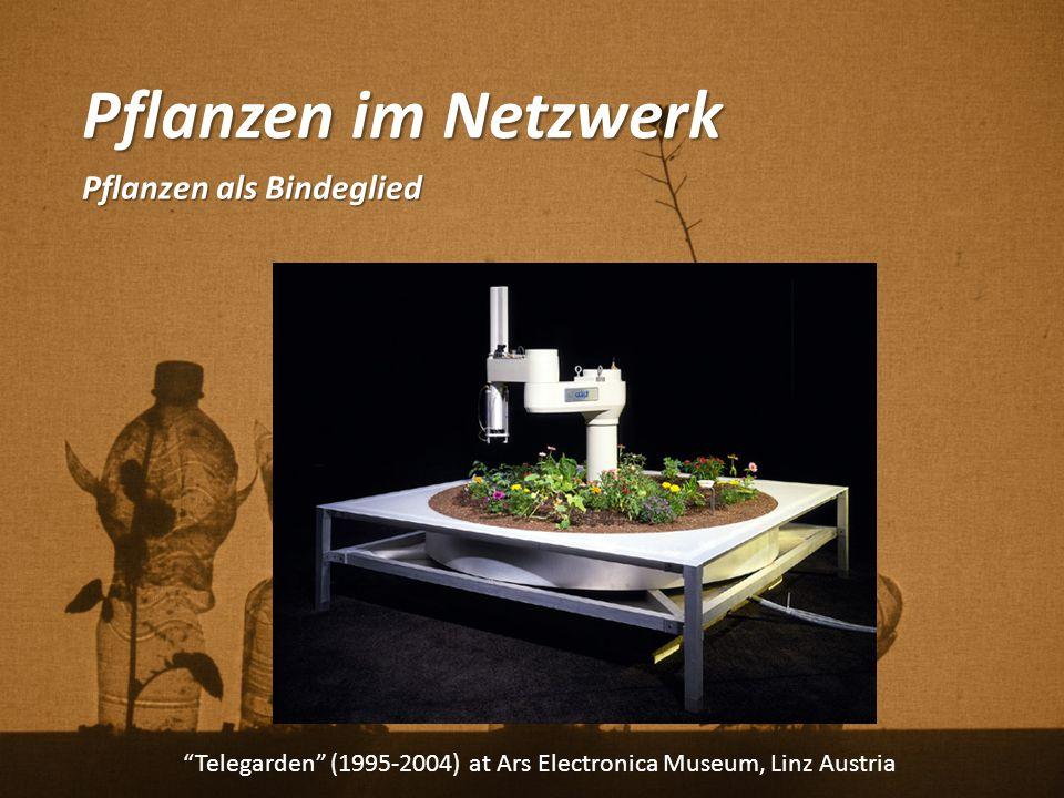 """Pflanzen im Netzwerk Pflanzen als Bindeglied """"Telegarden"""" (1995-2004) at Ars Electronica Museum, Linz Austria"""