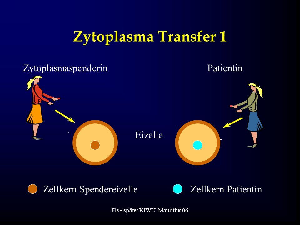 Fis - später KIWU Mauritius 06 Zytoplasma Transfer 1 ZytoplasmaspenderinPatientin Eizelle Zellkern SpendereizelleZellkern Patientin