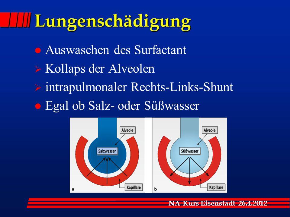 NA-Kurs Eisenstadt 26.4.2012 Lungenschädigung l Auswaschen des Surfactant  Kollaps der Alveolen  intrapulmonaler Rechts-Links-Shunt l Egal ob Salz- oder Süßwasser
