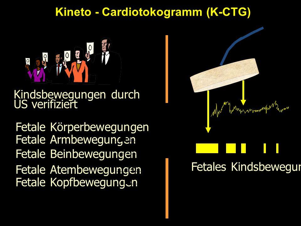 Kineto - Cardiotokogramm (K-CTG) Kindsbewegungen durch US verifiziert Fetale Kopfbewegungen Fetale Atembewegungen Fetale Beinbewegungen Fetale Körperb