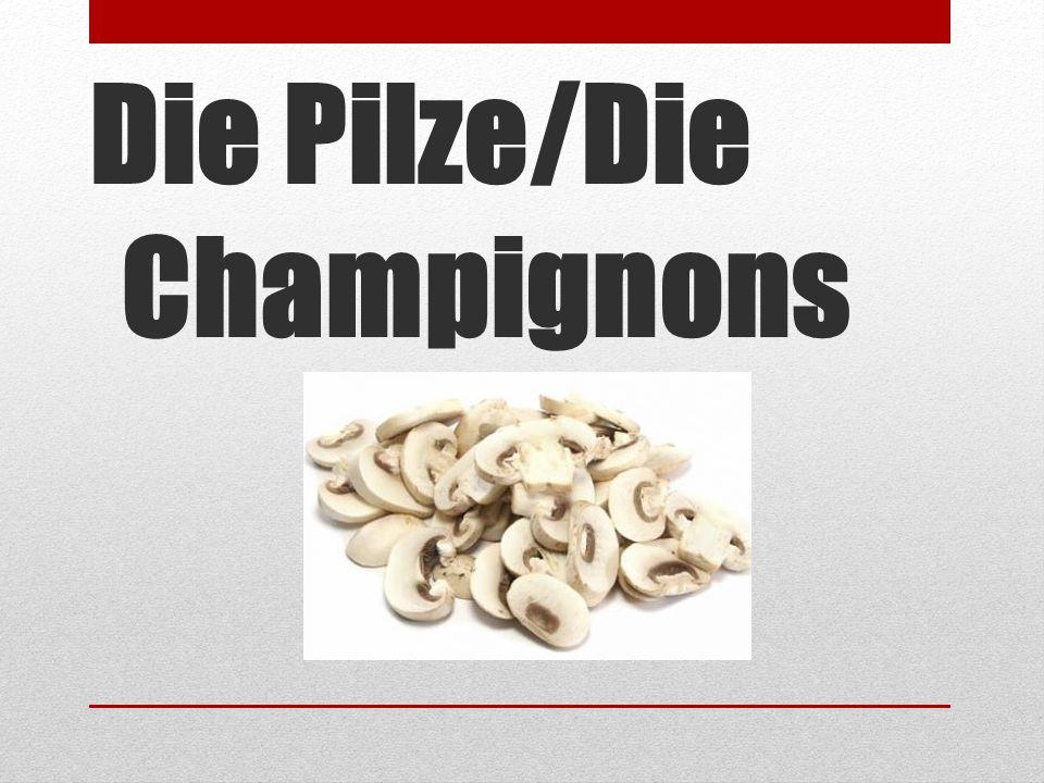 Die Pilze/Die Champignons
