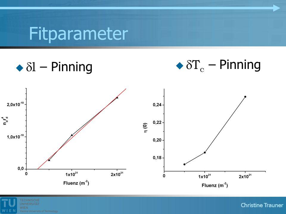 Christine Trauner Fitparameter   l – Pinning   T c – Pinning