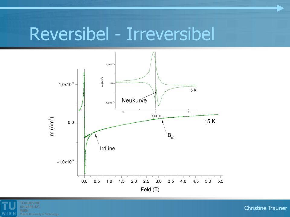 Christine Trauner Reversibel - Irreversibel