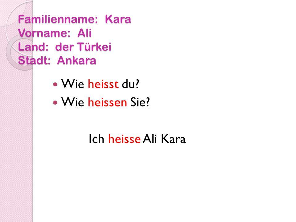 Familienname: Kara Vorname: Ali Land: der Türkei Stadt: Ankara Wie heisst du.