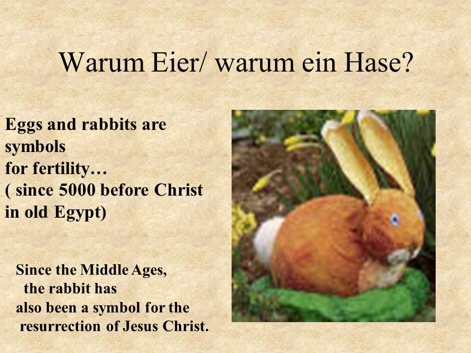 Warum Eier/ warum ein Hase? Eggs and rabbits are symbols for fertility… ( since 5000 before Christ in old Egypt) Since the Middle Ages, the rabbit has