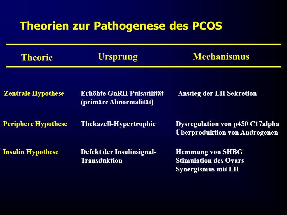 Theorien zur Pathogenese des PCOS Theorie MechanismusUrsprung Zentrale HypotheseErhöhte GnRH Pulsatilität (primäre Abnormalität ) Anstieg der LH Sekretion Periphere HypotheseThekazell-HypertrophieDysregulation von p450 C17alpha Überproduktion von Androgenen Insulin HypotheseDefekt der Insulinsignal- Transduktion Hemmung von SHBG Stimulation des Ovars Synergismus mit LH
