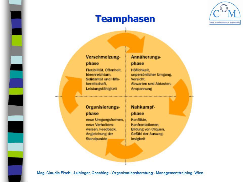 Mag. Claudia Fischl -Lubinger, Coaching - Organisationsberatung - Managementtraining, Wien Teamphasen