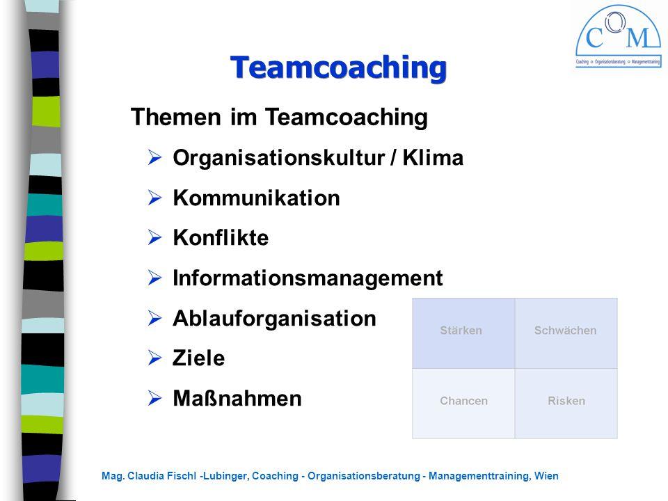 Mag. Claudia Fischl -Lubinger, Coaching - Organisationsberatung - Managementtraining, Wien Teamcoaching Themen im Teamcoaching  Organisationskultur /