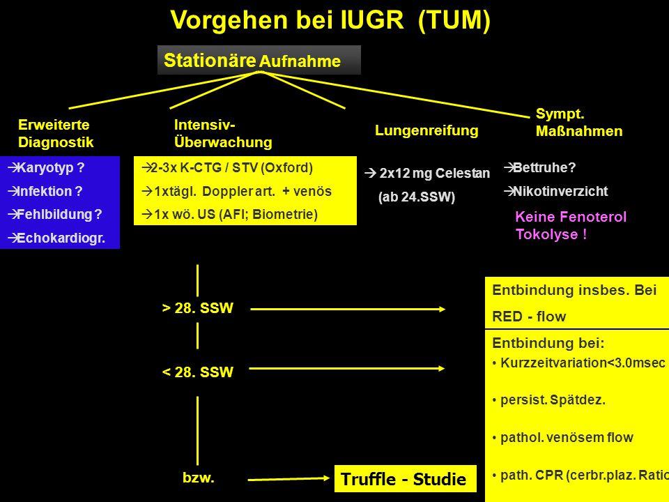 Stationäre Aufnahme Erweiterte Diagnostik Intensiv- Überwachung Lungenreifung Sympt. Maßnahmen  Karyotyp ?  Infektion ?  Fehlbildung ?  Echokardio