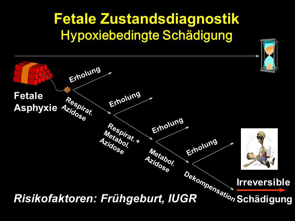 Fetale Zustandsdiagnostik Hypoxiebedingte Schädigung Fetale Asphyxie Risikofaktoren: Frühgeburt, IUGR Irreversible Schädigung Respirat. Azidose Erholu