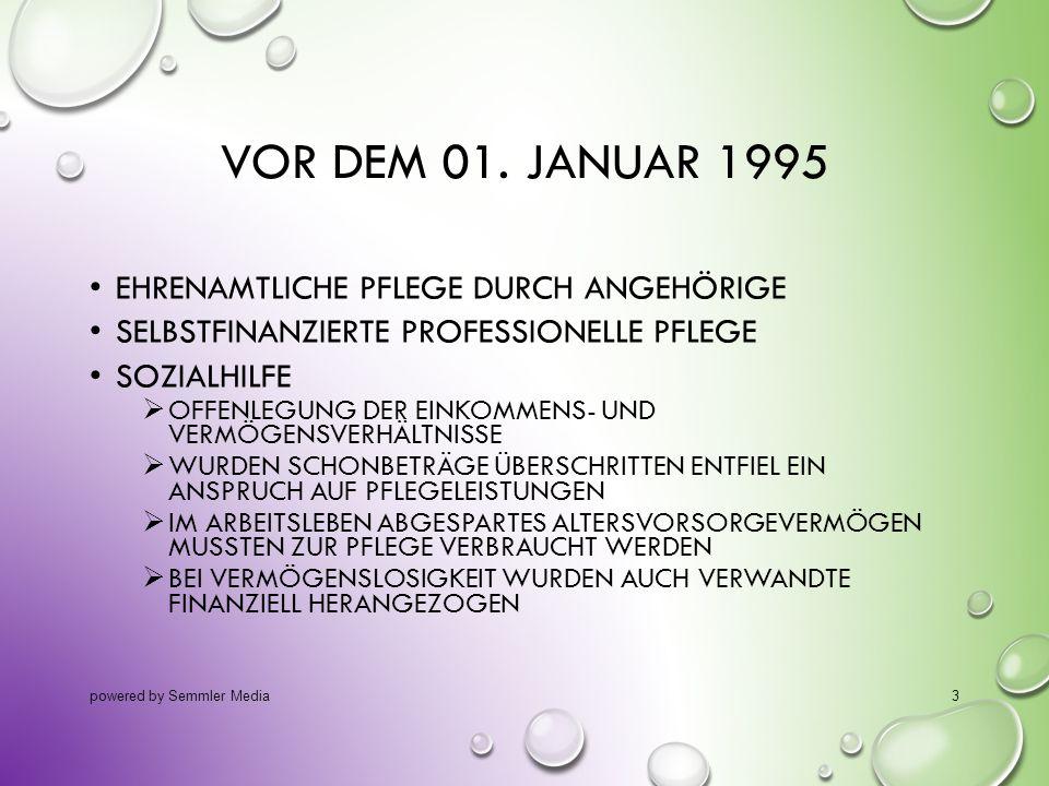 VOR DEM 01. JANUAR 1995 EHRENAMTLICHE PFLEGE DURCH ANGEHÖRIGE SELBSTFINANZIERTE PROFESSIONELLE PFLEGE SOZIALHILFE  OFFENLEGUNG DER EINKOMMENS- UND VE