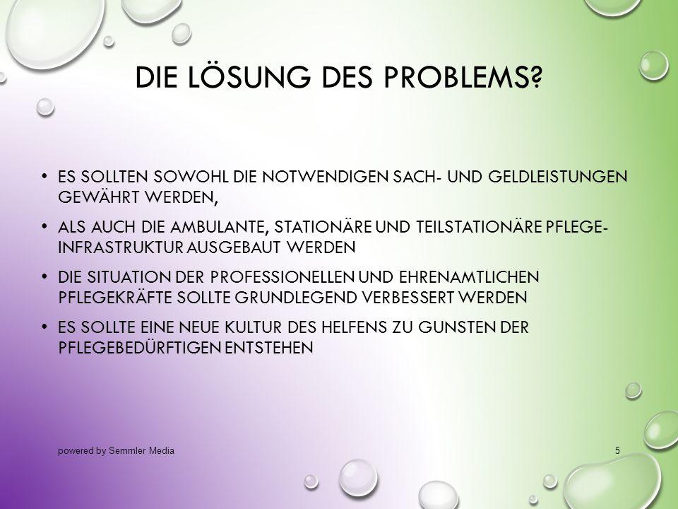 DIE LÖSUNG DES PROBLEMS? ES SOLLTEN SOWOHL DIE NOTWENDIGEN SACH- UND GELDLEISTUNGEN GEWÄHRT WERDEN, ALS AUCH DIE AMBULANTE, STATIONÄRE UND TEILSTATION