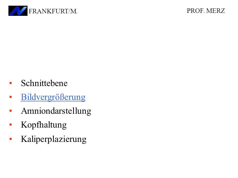 Schnittebene Bildvergrößerung Amniondarstellung Kopfhaltung Kaliperplazierung PROF. MERZ FRANKFURT/M.