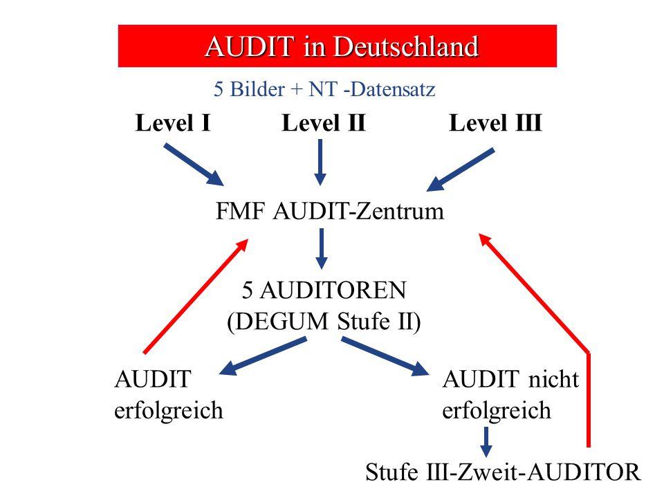 AUDIT in Deutschland AUDIT in Deutschland Level ILevel IILevel III FMF AUDIT-Zentrum 5 AUDITOREN (DEGUM Stufe II) AUDIT erfolgreich AUDIT nicht erfolg