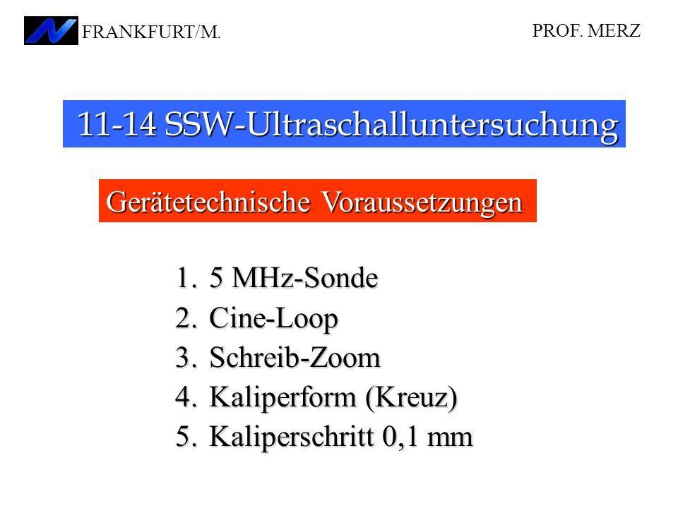 Gerätetechnische Voraussetzungen 11-14 SSW-Ultraschalluntersuchung 11-14 SSW-Ultraschalluntersuchung 1.5 MHz-Sonde 2.Cine-Loop 3.Schreib-Zoom 4.Kalipe