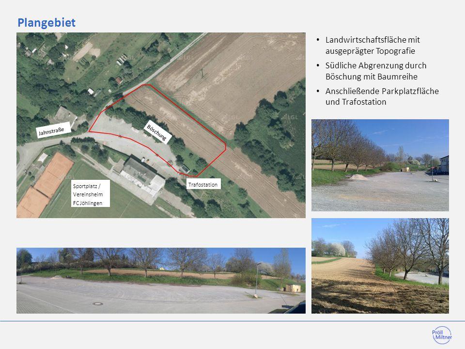 Plangebiet Trafostation Böschung Sportplatz / Vereinsheim FC Jöhlingen Jahnstraße Landwirtschaftsfläche mit ausgeprägter Topografie Südliche Abgrenzun