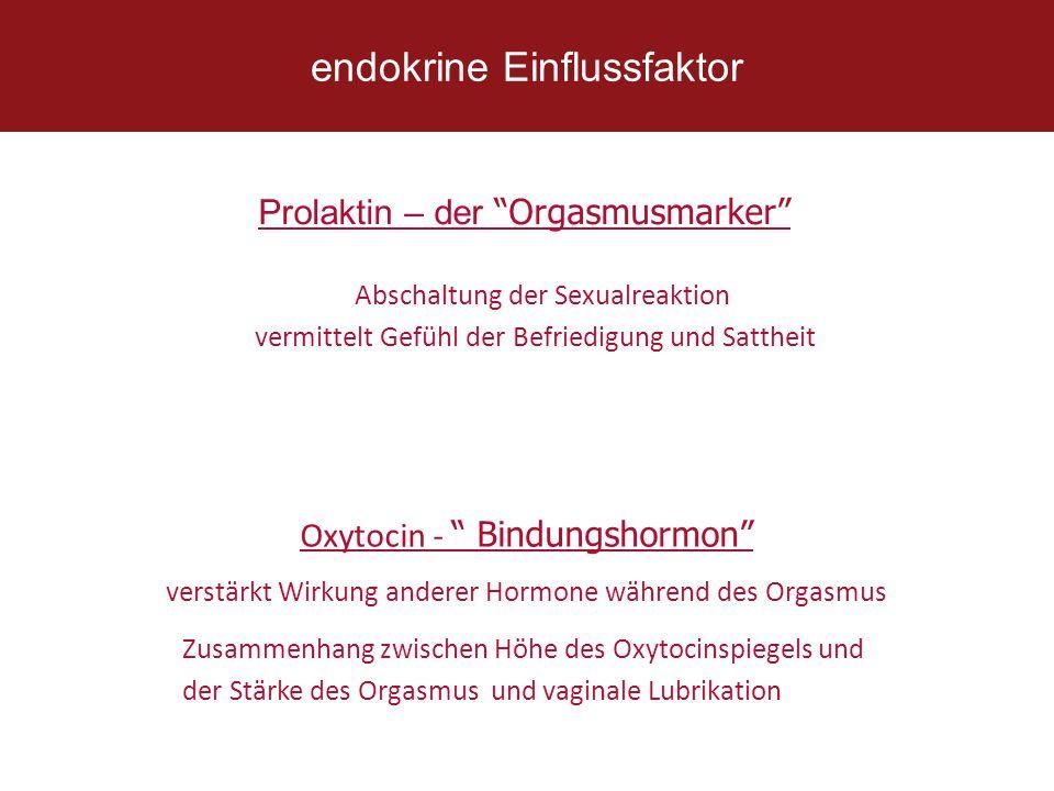 """Prolaktin – der """"Orgasmusmarker"""" verstärkt Wirkung anderer Hormone während des Orgasmus Oxytocin - """" Bindungshormon"""" Zusammenhang zwischen Höhe des Ox"""