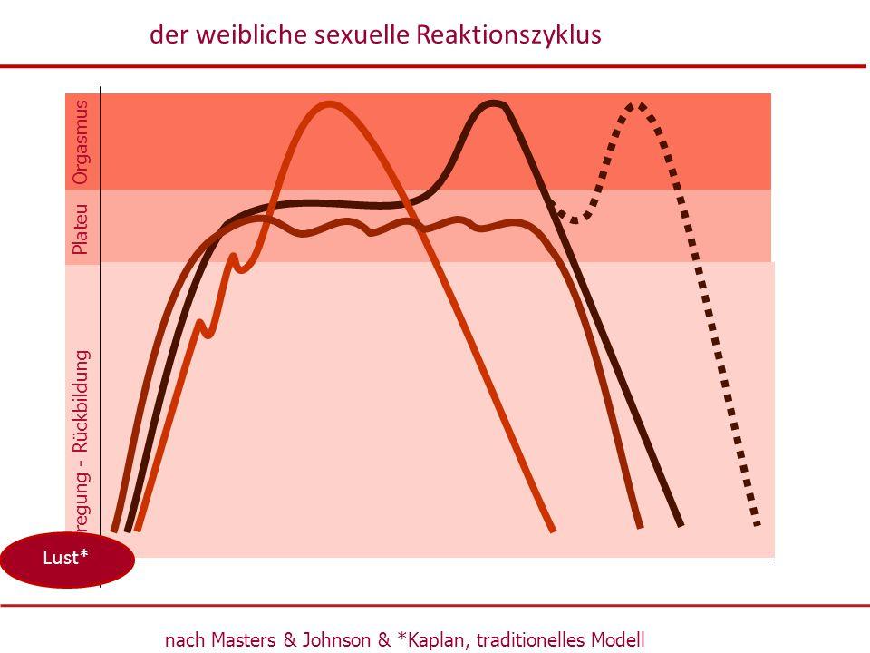 Erregung - Rückbildung Orgasmus Plateu nach Masters & Johnson & *Kaplan, traditionelles Modell der weibliche sexuelle Reaktionszyklus Lust*