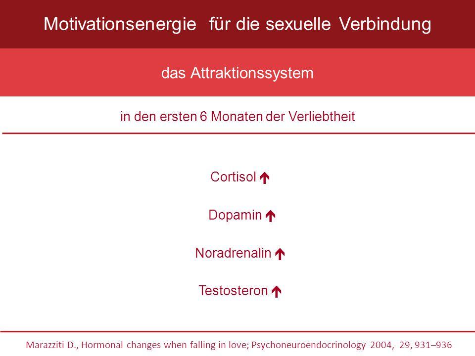 Klasssifikation nach Basson R et al.2000 Der dauernde oder wiederkehrende Mangel (bzw.