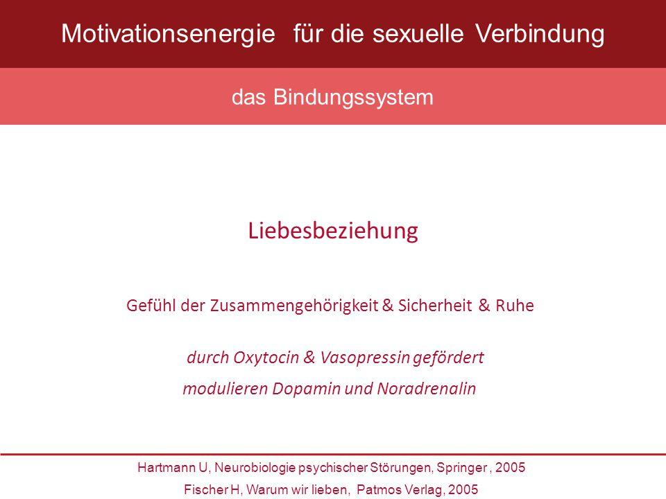 untere soziale Schicht Alter zwischen 25 und 43 Jahren längere Partnerschaft > 20 Jahre vorliegende Depression oder Ängste schlechter Gesundheitszustand Harninkontinenz Hormontherapie Menopause und hier vor allem die chirurgische Haupt-Risikofaktoren HSDD zu entwickeln Shifren JL, et al., Prevalence of Female Sexual Disorders and Determinants of Treatment Seeking Study Obstet Gynecol 2008, 112:, 970-978 N.: 31 581