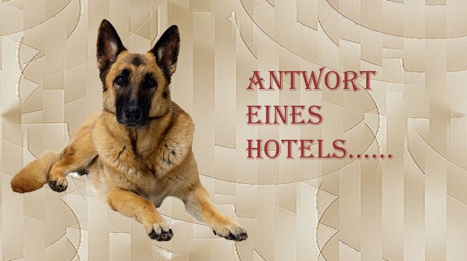 Antwort eines Hotels......