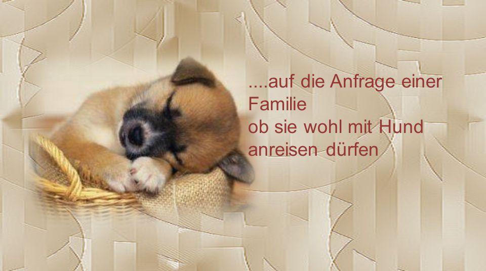 ....auf die Anfrage einer Familie ob sie wohl mit Hund anreisen dürfen