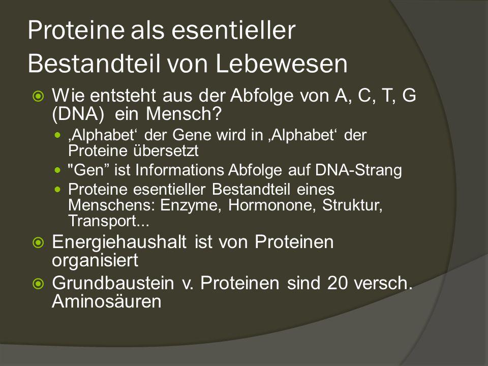 Proteine als esentieller Bestandteil von Lebewesen  Wie entsteht aus der Abfolge von A, C, T, G (DNA) ein Mensch? 'Alphabet' der Gene wird in 'Alphab