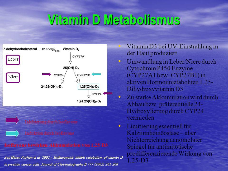 Vitamin D Metabolismus Vitamin D3 bei UV-Einstrahlung in der Haut produziert Umwandlung in Leber/Niere durch Cytochrom P450 Enzyme (CYP27A1 bzw. CYP27