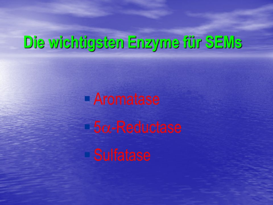   Aromatase   5  -Reductase   Sulfatase Die wichtigsten Enzyme für SEMs