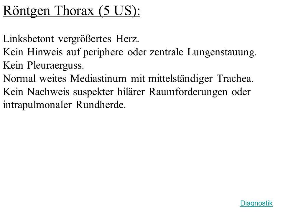 Röntgen Thorax (5 US): Linksbetont vergrößertes Herz. Kein Hinweis auf periphere oder zentrale Lungenstauung. Kein Pleuraerguss. Normal weites Mediast