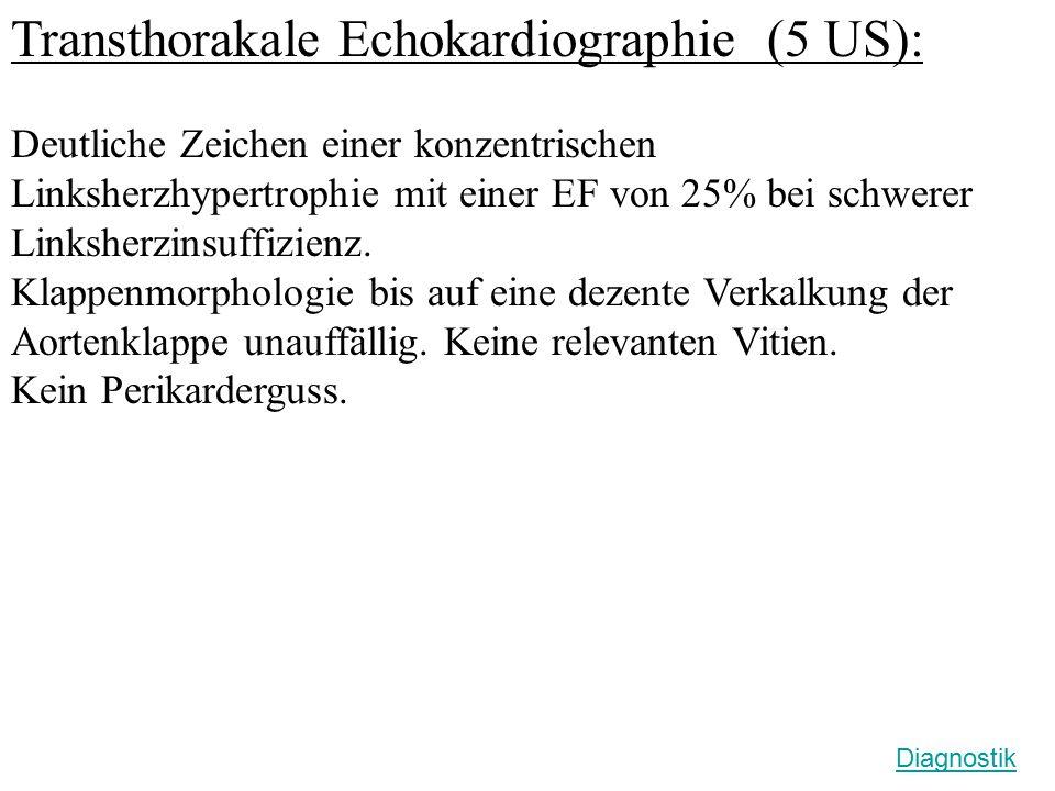 Transthorakale Echokardiographie (5 US): Deutliche Zeichen einer konzentrischen Linksherzhypertrophie mit einer EF von 25% bei schwerer Linksherzinsuf